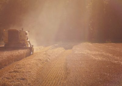 Combining On Brahan Estate
